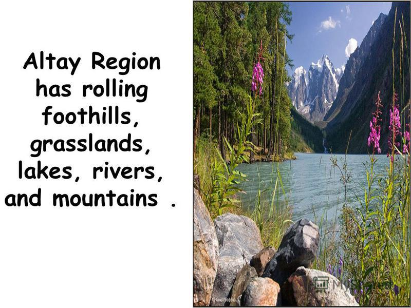 Altay Region has rolling foothills, grasslands, lakes, rivers, and mountains.