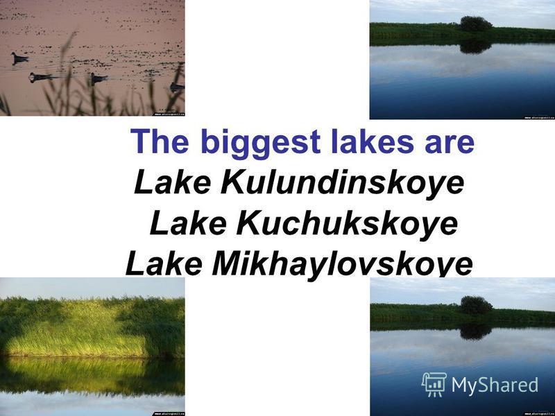 The biggest lakes are Lake Kulundinskoye Lake Kuchukskoye Lake Mikhaylovskoye