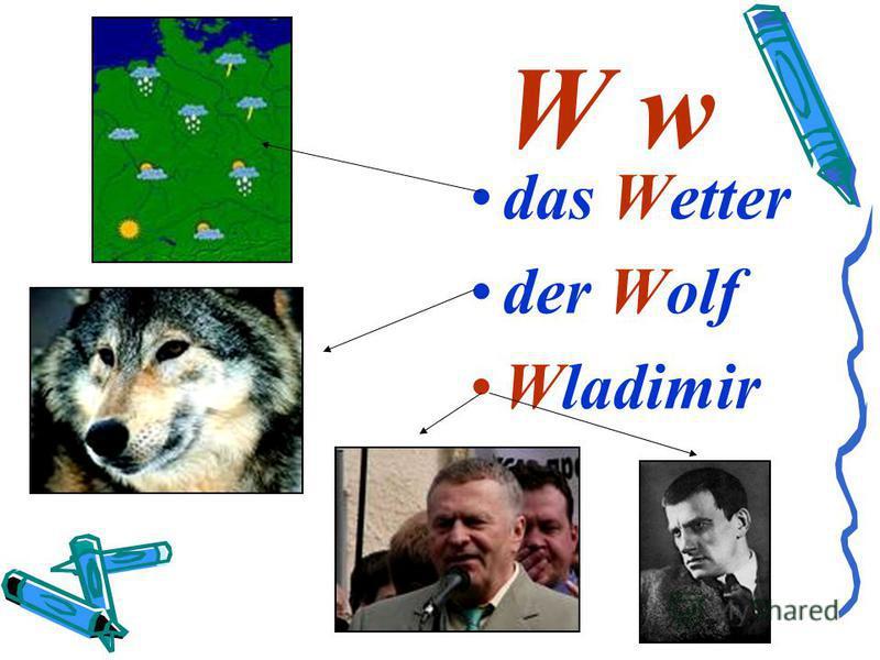 W w das Wetter der Wolf Wladimir