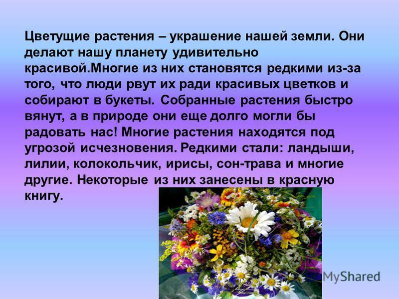 Цветущие растения – украшение нашей земли. Они делают нашу планету удивительно красивой.Многие из них становятся редкими из-за того, что люди рвут их ради красивых цветков и собирают в букеты. Собранные растения быстро вянут, а в природе они еще долг