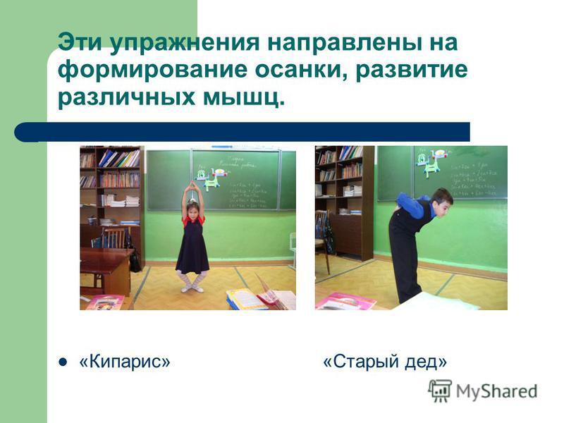 Эти упражнения направлены на формирование осанки, развитие различных мышц. «Кипарис» «Старый дед»
