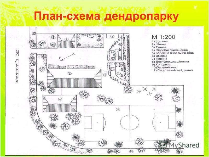 План-схема дендропарку