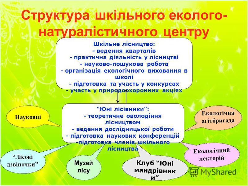 Структура шкільного еколого- натуралістичного центру Шкільне лісництво: - ведення кварталів - практична діяльність у лісництві - науково-пошукова робота - організація екологічного виховання в школі - підготовка та участь у конкурсах - участь у природ