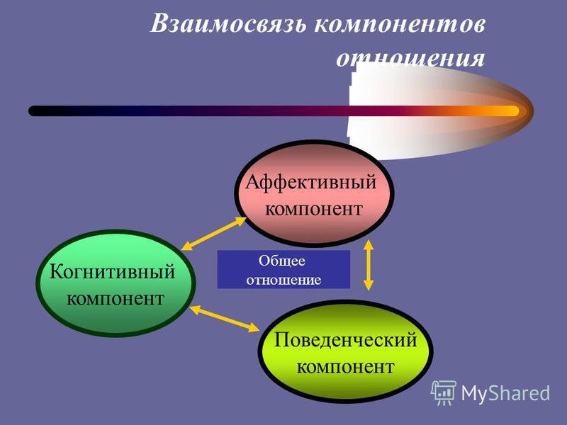 Взаимосвязь компонентов отношения Когнитивный компонент Аффективный компонент Поведенческий компонент Общее отношение
