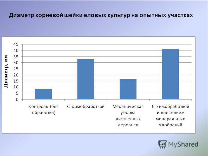 Диаметр корневой шейки еловых культур на опытных участках