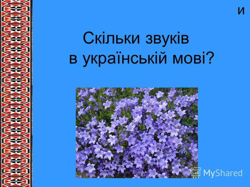 и Скільки звуків в українській мові?