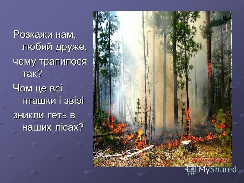 Розкажи нам, любий друже, чому трапилося так? Чом це всі пташки і звірі зникли геть в наших лісах?