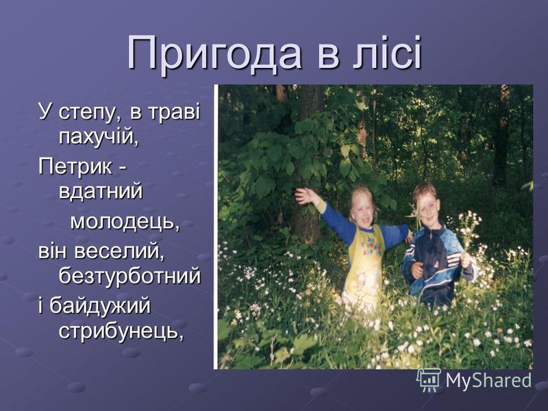 Пригода в лісі У степу, в траві пахучій, Петрик - вдатний молодець, молодець, він веселий, безтурботний і байдужий стрибунець,