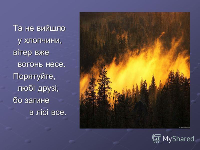 Та не вийшло Та не вийшло у хлопчини, у хлопчини, вітер вже вітер вже вогонь несе. вогонь несе. Порятуйте, Порятуйте, любі друзі, любі друзі, бо загине бо загине в лісі все. в лісі все.