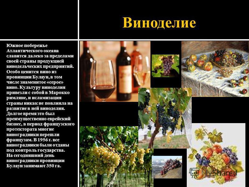 Виноделие Южное побережье Атлантического океана славится далеко за пределами своей страны продукцией винодельческих предприятий. Особо ценится вино из провинции Булаун, в том числе знаменитое «серое» вино. Культуру виноделия привезли с собой в Марокк