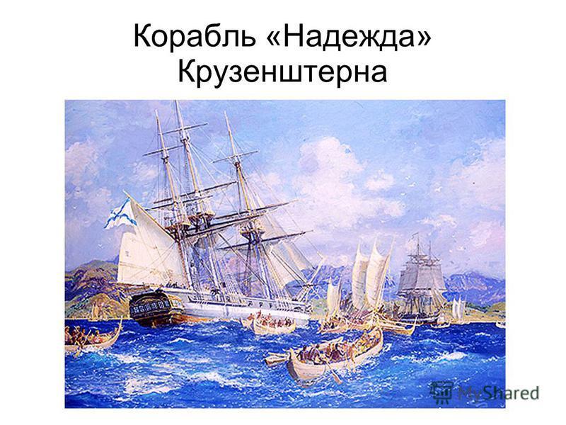 Корабль «Надежда» Крузенштерна
