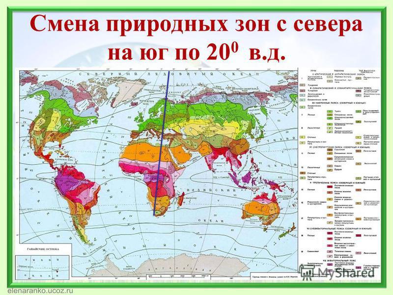 Смена природных зон с севера на юг по 20 0 в.д.