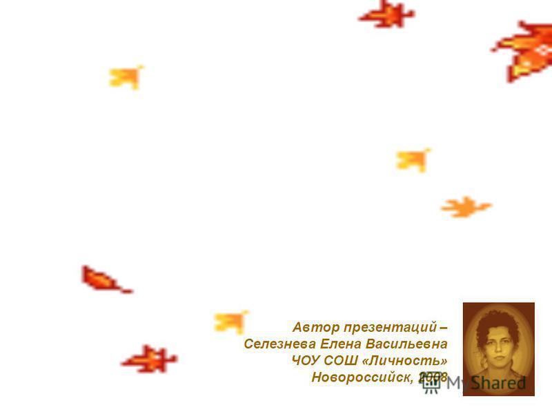 Автор презентаций – Селезнева Елена Васильевна ЧОУ СОШ «Личность» Новороссийск, 2008