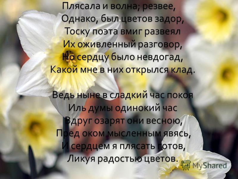 Плясала и волна ; резвее, Однако, был цветов задор, Тоску поэта вмиг развеял Их оживленный разговор, Но сердцу было невдогад, Какой мне в них открылся клад. Ведь ныне в сладкий час покоя Иль думы одинокий час Вдруг озарят они весною, Пред оком мыслен