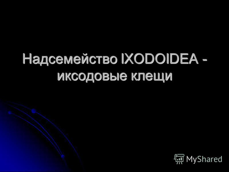 Надсемейство IXODOIDEA - иксодовые клещи