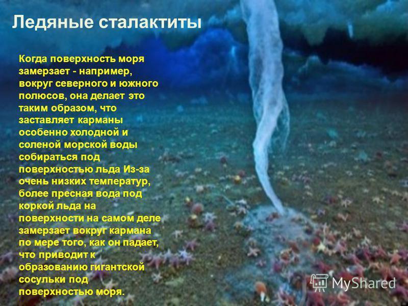 Ледяные сталактиты Когда поверхность моря замерзает - например, вокруг северного и южного полюсов, она делает это таким образом, что заставляет карманы особенно холодной и соленой морской воды собираться под поверхностью льда Из-за очень низких темпе