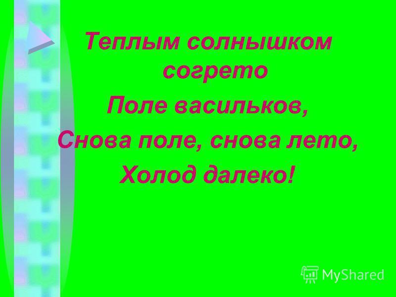 Теплым солнышком согрето Поле васильков, Снова поле, снова лето, Холод далеко!