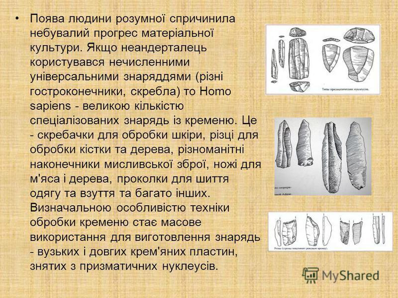 Поява людини розумної спричинила небувалий прогрес матеріальної культури. Якщо неандерталець користувався нечисленними універсальними знаряддями (різні гостроконечники, скребла) то Homo sapiens - великою кількістю спеціалізованих знарядь із кременю.