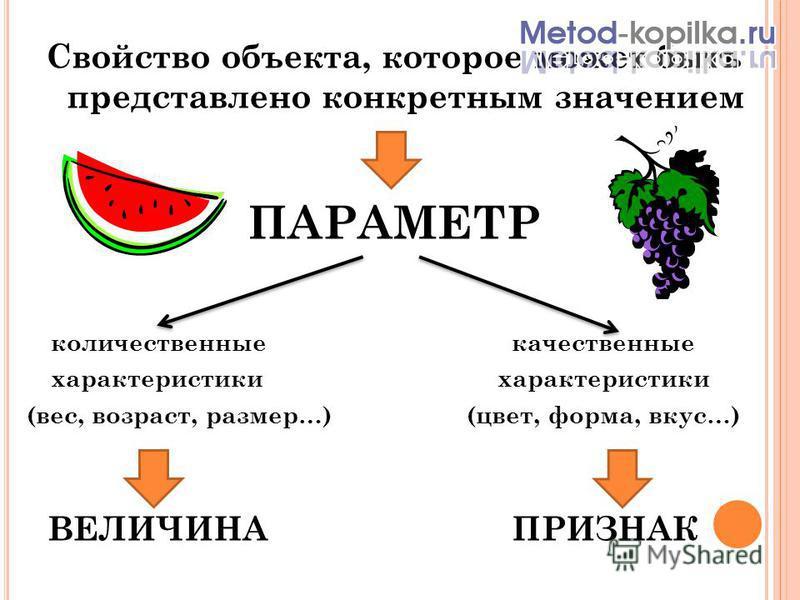 Свойство объекта, которое может быть представлено конкретным значением ПАРАМЕТР количественные качественные характеристики (вес, возраст, размер…) (цвет, форма, вкус…) ВЕЛИЧИНА ПРИЗНАК