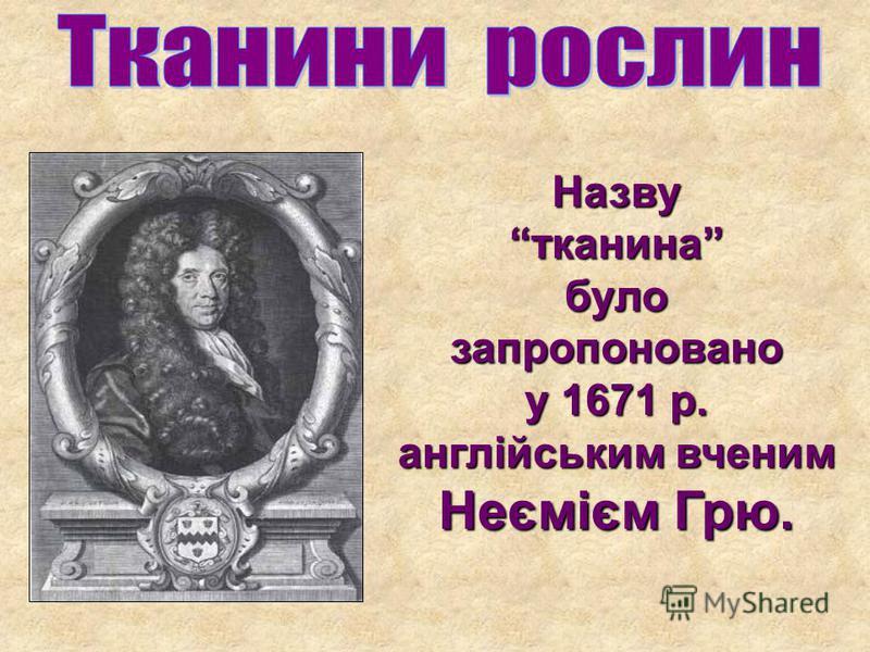 Назву тканина було запропоновано у 1671 р. англійським вченим Неємієм Грю.