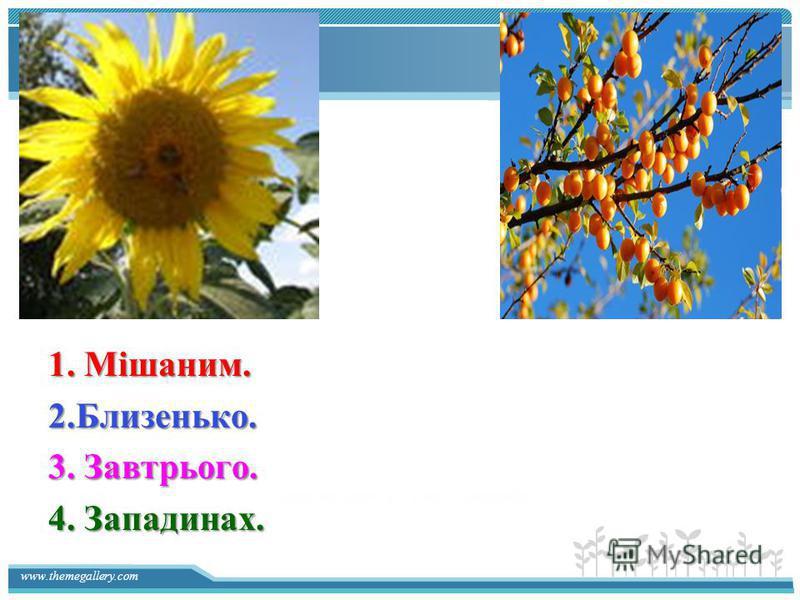 Description of the contents 1. Мішаним. 2.Близенько. 3. Завтрього. 4. Западинах.