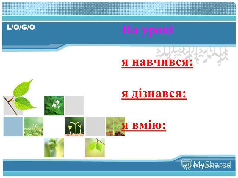 L/O/G/O www.themegallery.com На уроці я навчився: я дізнався: я вмію: