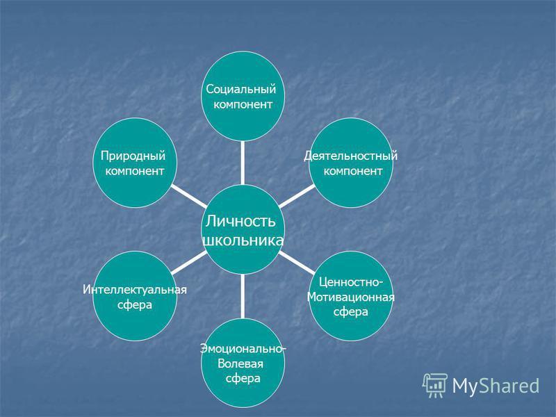Личность школьника Социальный компонент Деятельностный компонент Ценностно- Мотивационная сфера Эмоционально- Волевая сфера Интеллектуальная сфера Природный компонент