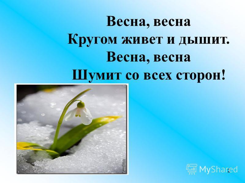 Весна, весна Кругом живет и дышит. Весна, весна Шумит со всех сторон! 2
