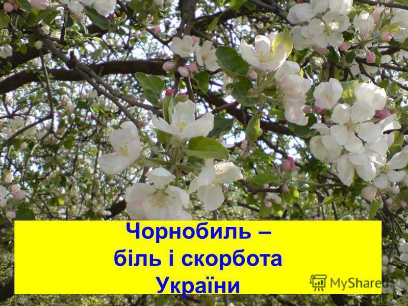 Чорнобиль – біль і скорбота України