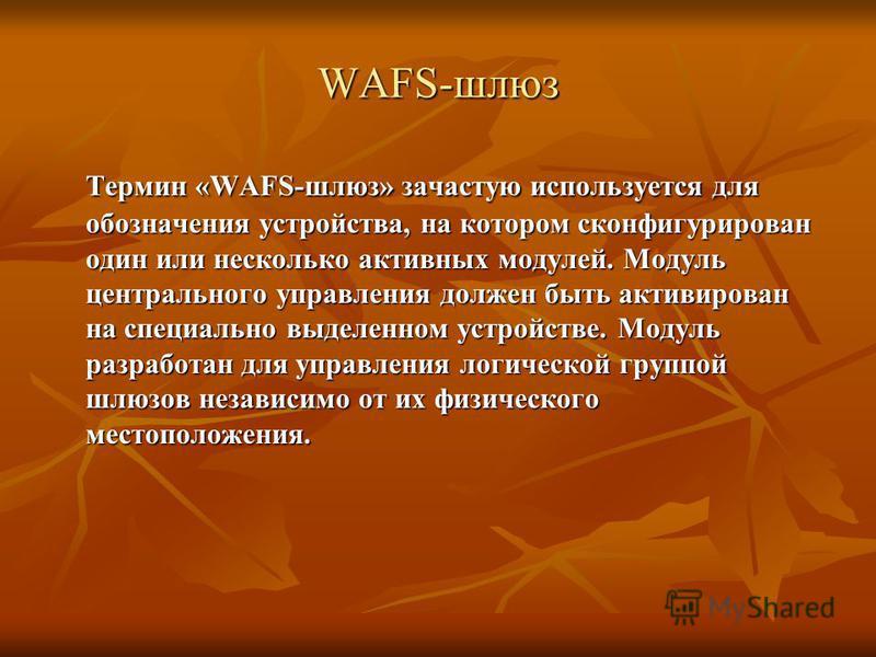WAFS-шлюз Термин «WAFS-шлюз» зачастую используется для обозначения устройства, на котором сконфигурирован один или несколько активных модулей. Модуль центрального управления должен быть активирован на специально выделенном устройстве. Модуль разработ