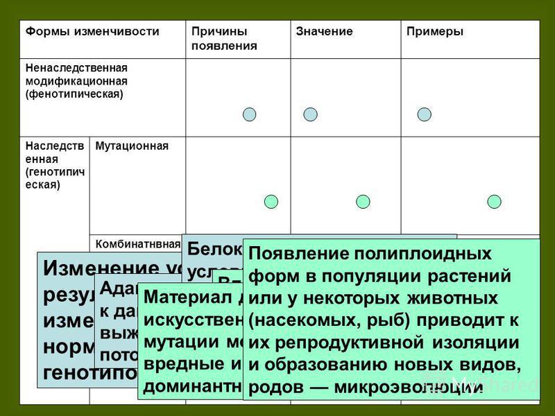 Формы изменчивости Причины появления Значение Примеры Ненаследственная модификационная (фенотипическая) Наследств енная (генотипическая) Мутационная Комбинатнвная Соотносительн ая (коррелятивна я) Изменение условий среды, в результате чего организм и