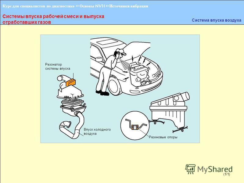 (1/2) Курс для специалистов по диагностике >> Основы NVH >> Источники вибрации Системы впуска рабочей смеси и выпуска отработавших газов Система впуска воздуха Резонатор системы впуска Впуск холодного воздуха Резиновые опоры (1/1)