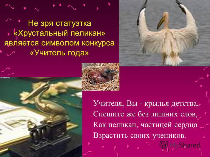 Не зря статуэтка «Хрустальный пеликан» является символом конкурса «Учитель года» Учителя, Вы - крылья детства, Спешите же без лишних слов, Как пеликан, частицей сердца Взрастить своих учеников.