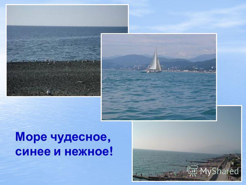 Подводный мир Черного моря Немиро Людмила Васильевна МОУ СОШ 26 г. Сочи