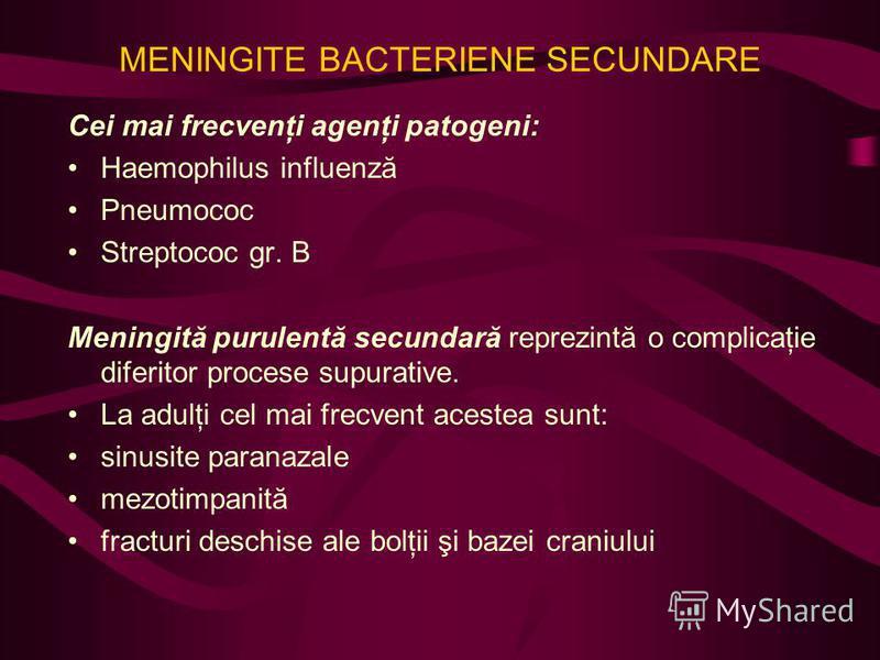 MENINGITE BACTERIENE SECUNDARE Cei mai frecvenţi agenţi patogeni: Haemophilus influenză Pneumococ Streptococ gr. B Meningită purulentă secundară reprezintă o complicaţie diferitor procese supurative. La adulţi cel mai frecvent acestea sunt: sinusite