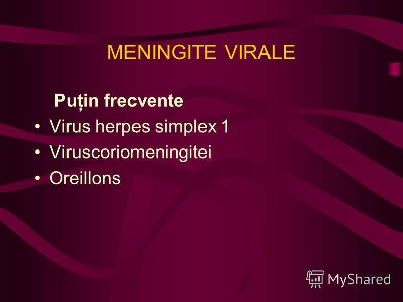 MENINGITE VIRALE Puţin frecvente Virus herpes simplex 1 Viruscoriomeningitei Oreillons