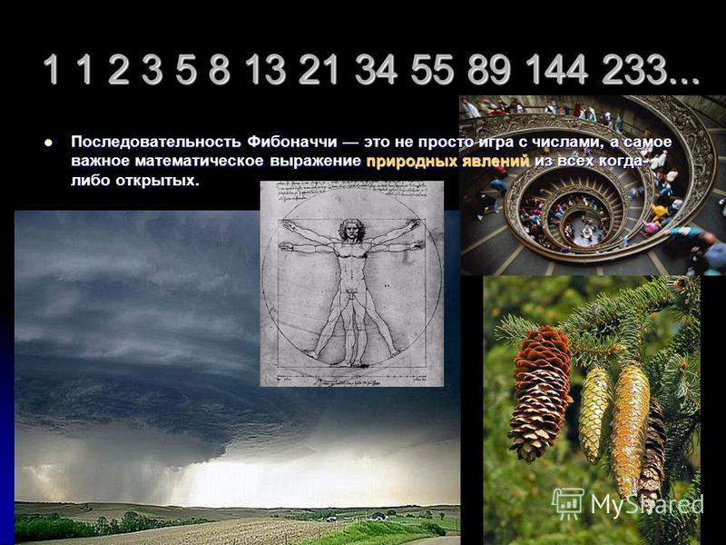 1 1 2 3 5 8 13 21 34 55 89 144 233... Последовательность Фибоначчи это не просто игра с числами, а самое важное математическое выражение природных явлений из всех когда- либо открытых. Последовательность Фибоначчи это не просто игра с числами, а само