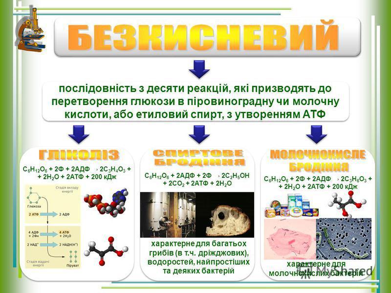 Органічні макромолекули за участю ферментів розпадаються на дрібні молекули: білки амінокислоти; вуглеводи глюкоза; жири гліцерин + жирні кислоти Енергія розсіюється у вигляді тепла Органічні макромолекули за участю ферментів розпадаються на дрібні м