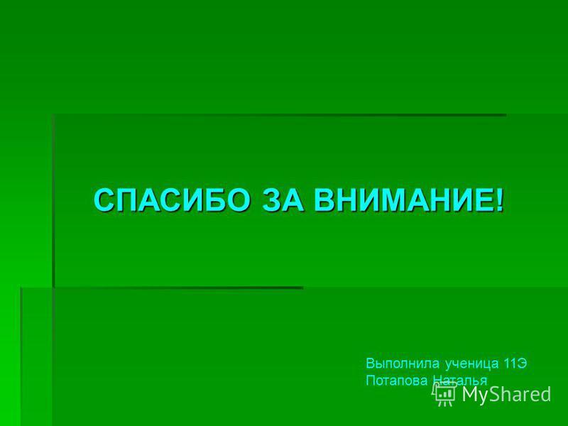 СПАСИБО ЗА ВНИМАНИЕ! Выполнила ученица 11Э Потапова Наталья