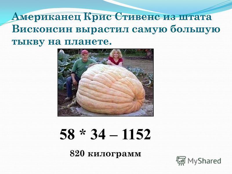 Американец Крис Стивенс из штата Висконсин вырастил самую большую тыкву на планете. 820 килограмм 58 * 34 – 1152