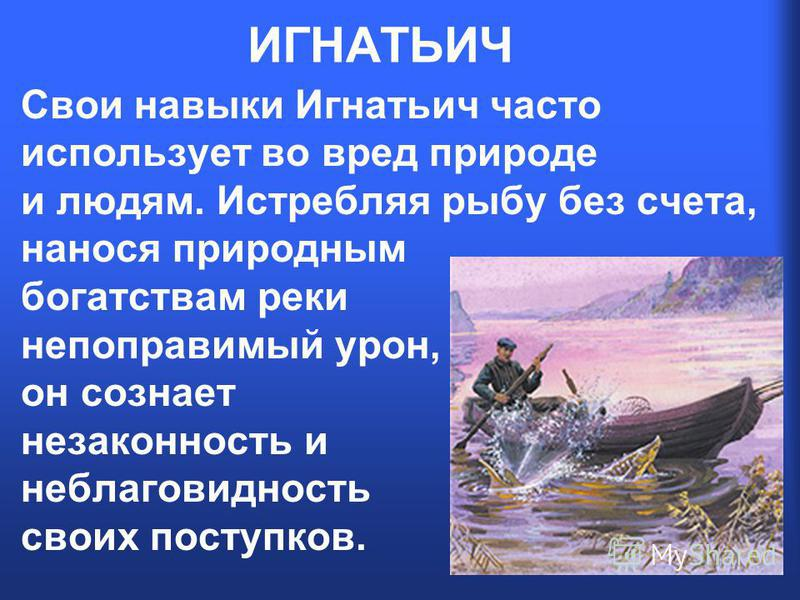 ИГНАТЬИЧ Свои навыки Игнатьич часто использует во вред природе и людям. Истребляя рыбу без счета, нанося природным богатствам реки непоправимый урон, он сознает незаконность и неблаговидность своих поступков.
