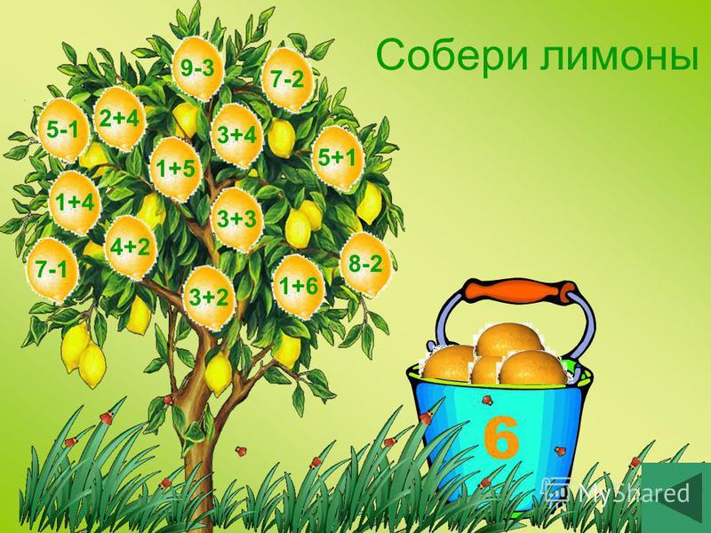 6 Собери лимоны 3+33+22+41+54+25+13+41+61+49-38-27-17-25-1