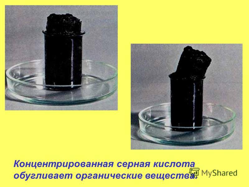 Концентрированная серная кислота обугливает органические вещества.