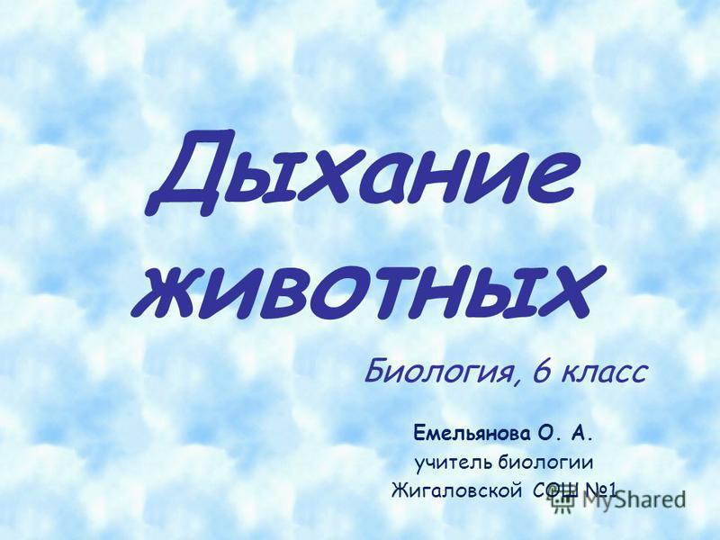 Дыхание животных Биология, 6 класс Емельянова О. А. учитель биологии Жигаловской СОШ 1