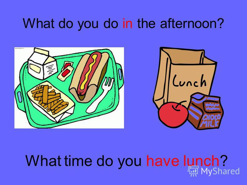 What do you do in the afternoon? What time do you have lunch?