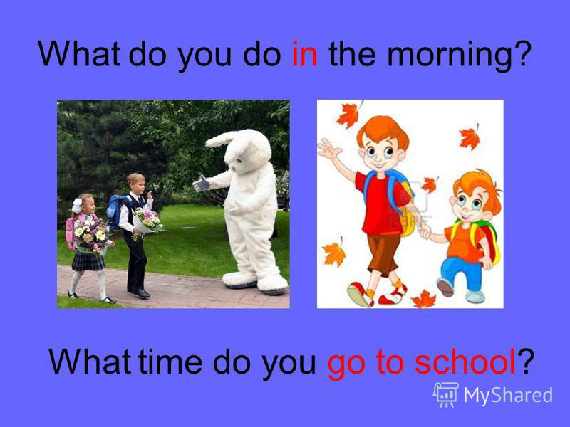 What do you do in the morning? What time do you go to school?
