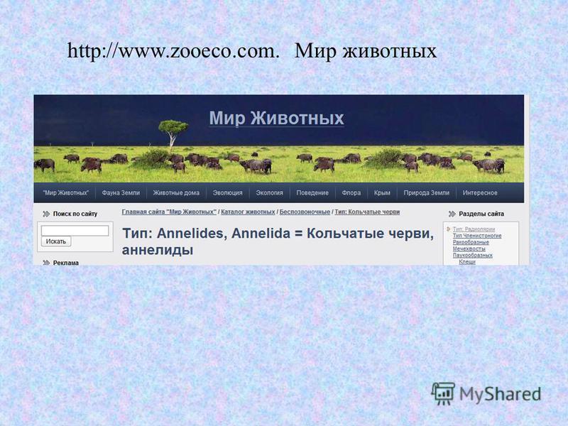 http://www.zooeco.com. Мир животных