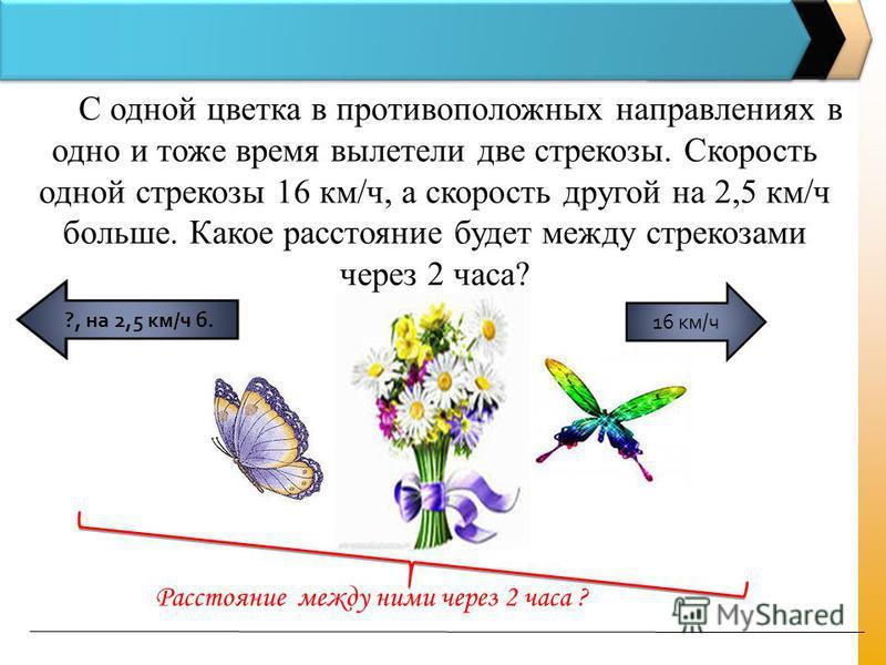 С одной цветка в противоположных направлениях в одно и тоже время вылетели две стрекозы. Скорость одной стрекозы 16 км/ч, а скорость другой на 2,5 км/ч больше. Какое расстояние будет между стрекозами через 2 часа? 16 км/ч ?, на 2,5 км/ч б. Расстояние