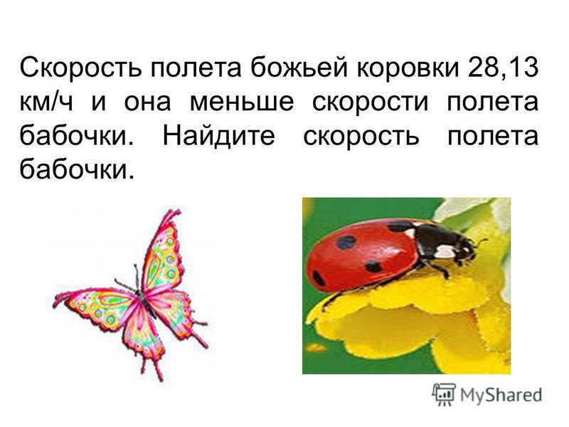 Скорость полета божьей коровки 28,13 км/ч и она меньше скорости полета бабочки. Найдите скорость полета бабочки.