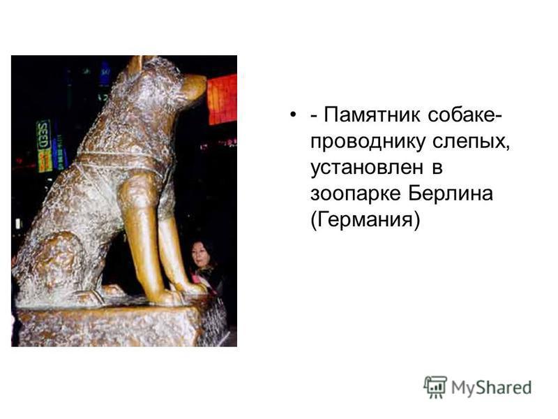 - Памятник собаке- проводнику слепых, установлен в зоопарке Берлина (Германия)